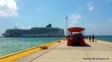 Our cruise ship, Norwegian Jewel, docked near Costa Maya Island, Mexico.