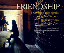Friendship adds values, and subtracts(1)